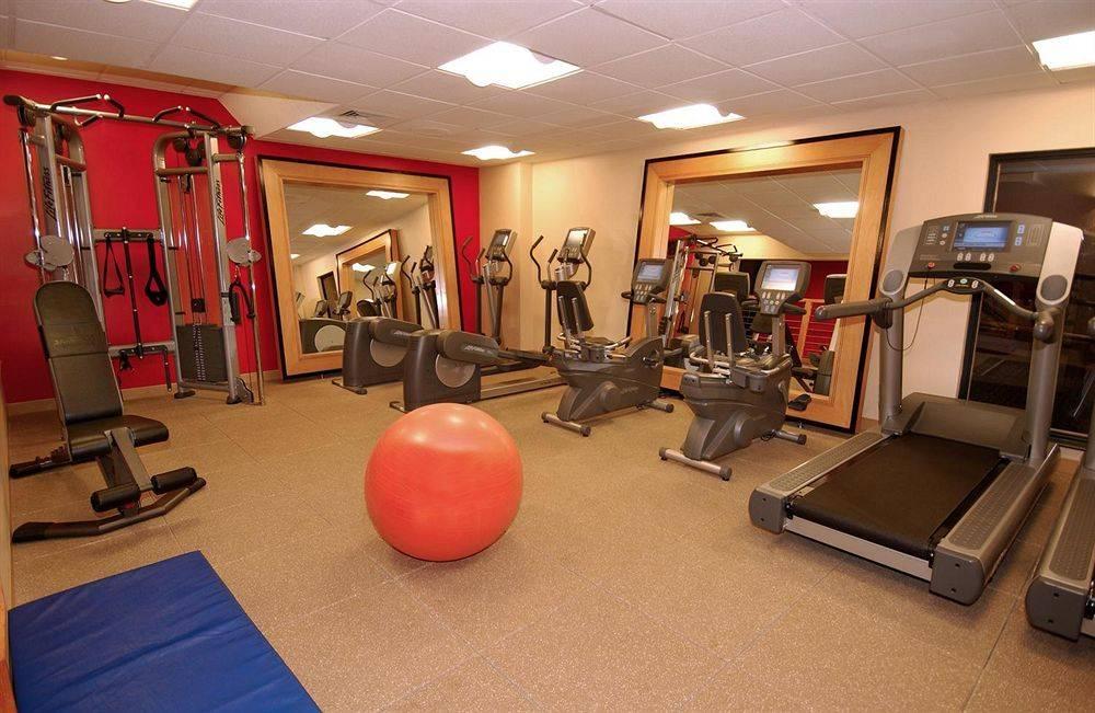 Big cat gym baia mare