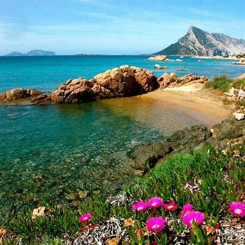 Island in San Teodoro Ibiza