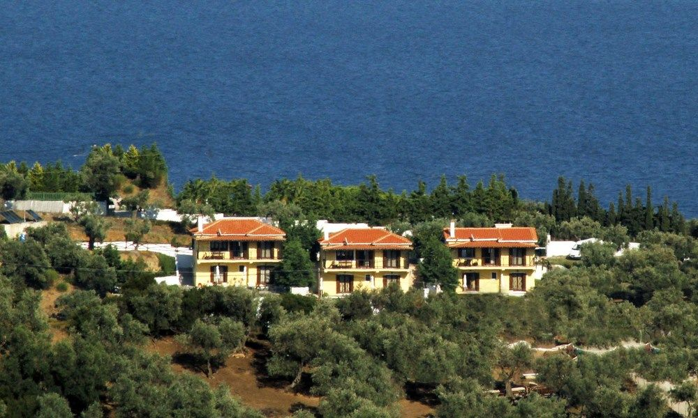 How much is the apartment in Skiathos