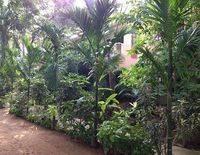 Hotel Pallava Dynasty