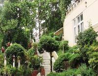 Sinclairs Darjeeling