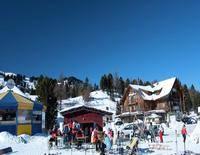 Alpenpark Turracherhöhe Chalet E