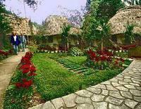 Maya Mountain Lodge & Tours