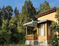 Wild Tusker Lodge