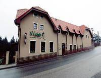 Pension U Lyzare