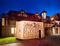 Hotel Viki