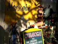 The Otarunai Backpacker's Hostel Morinoki