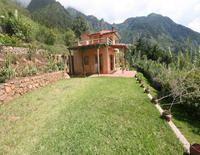 Atitlan Tree House