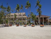 Ocean Vida Beach and Dive Resort