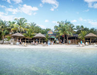 Paradise Oceanic
