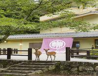 Miyajima Morinoyado