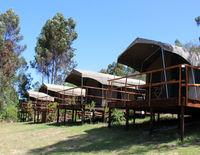 Tri Active Lodge