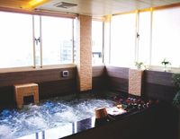 Host-On Exquisite Hotspring Hotel