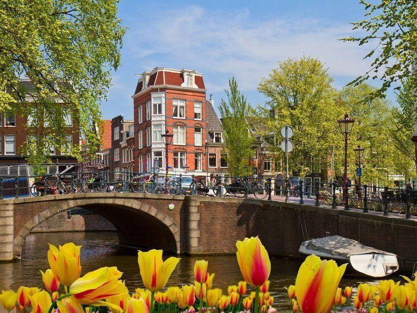 9- Hollanda patatesi ile lezzet molası