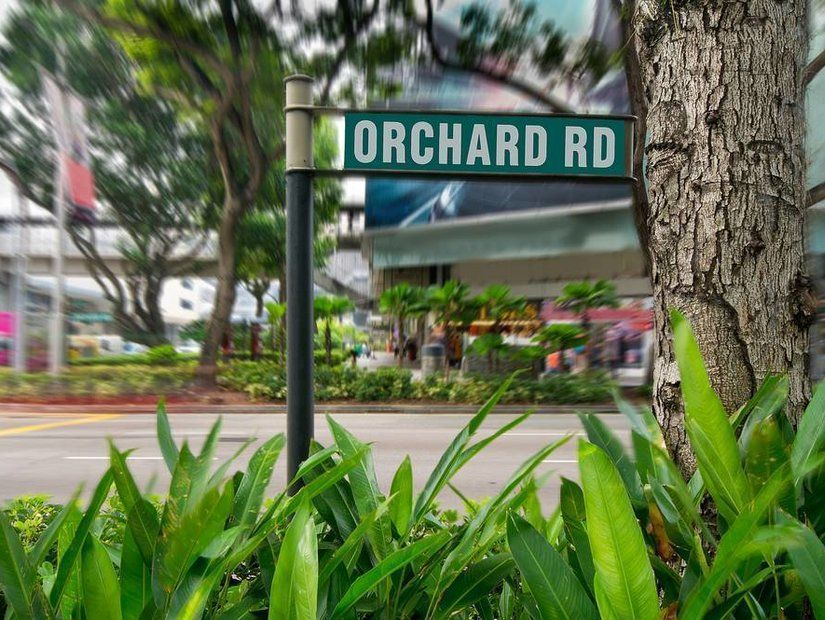 6- Denizden çıkan nefis Singapur lezzetleri