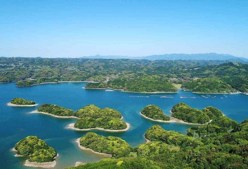 1- 6 binden fazla adadan meydana geliyor