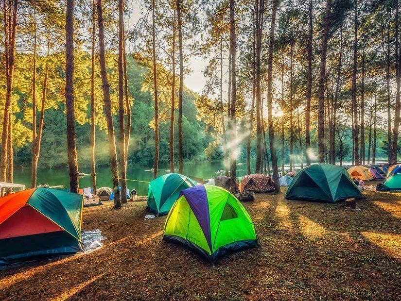 Kamp kurun