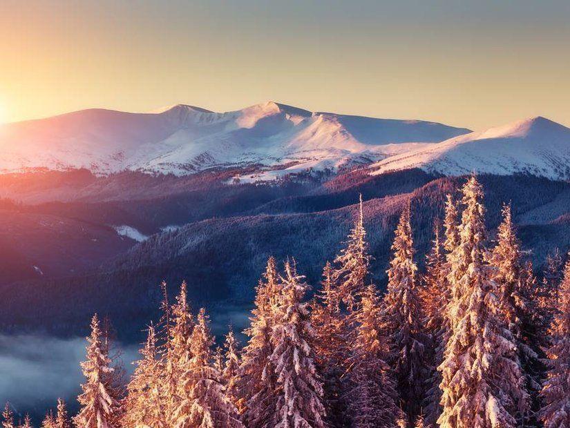 Kış güneşi Kıbrıs