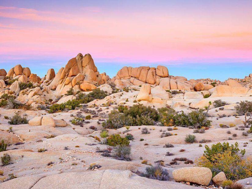 Mojave Çölü