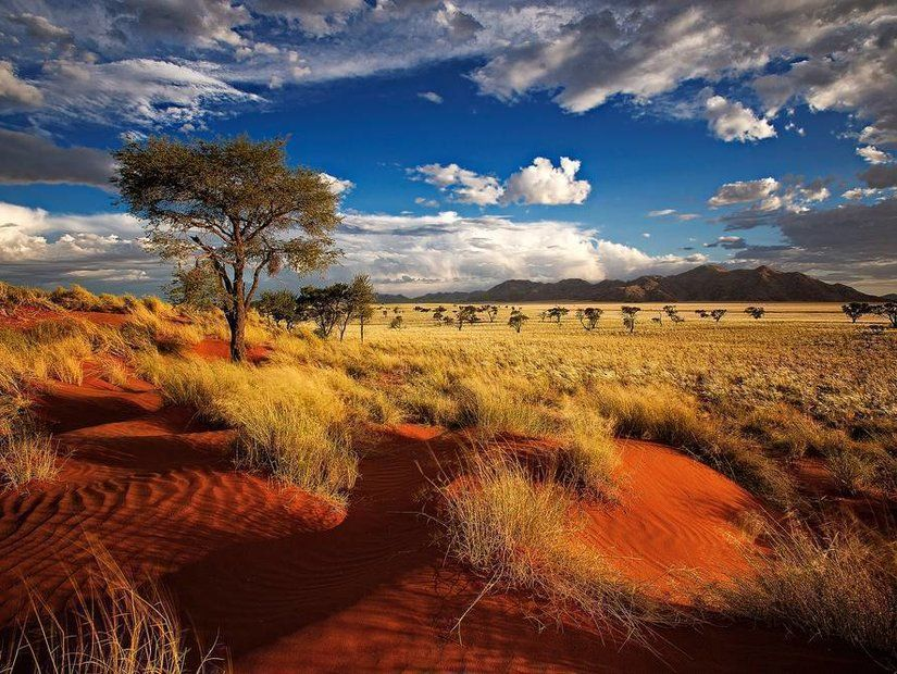 7- En az yağmurlu Namibya