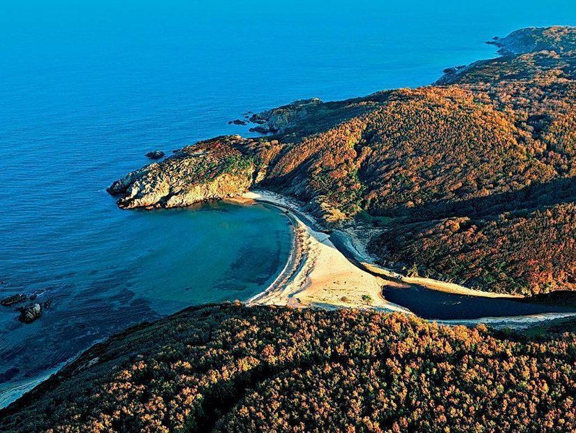 Yeşil ve mavinin kıyısında Sapanca