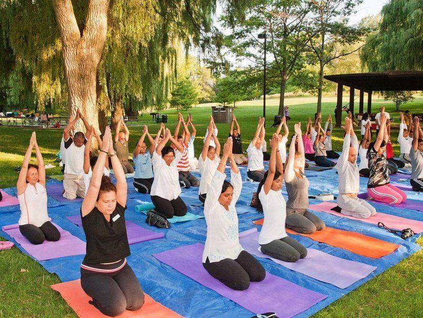 Yoga kampları