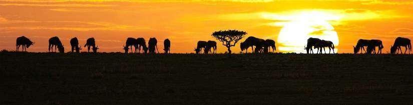 Dünyanın en iyi günbatımı manzaraları